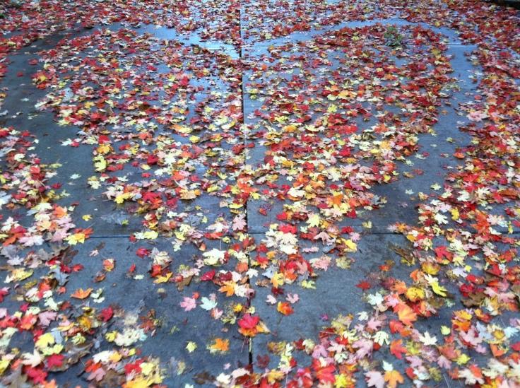10.30.13.leafheart