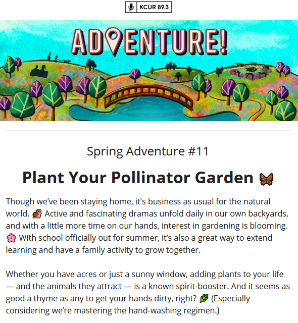 Screenshot_2020-06-16 KCUR Creative Adventure 🦋 Plant Your Pollinator Garden